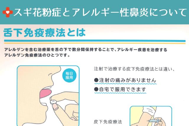 スギ花粉症とアレルギー性鼻炎について